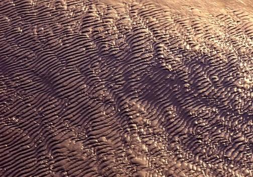 さざ波の足跡_f0055131_755290.jpg