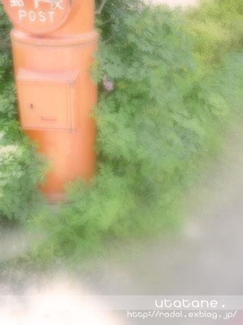 f0028745_8102563.jpg
