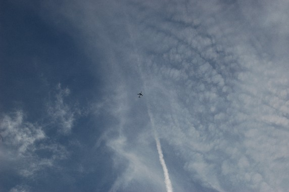 和歌山城と雲  2_b0093754_125595.jpg