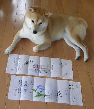 2006年7月26日(水)・・・花便り_f0060461_10534719.jpg