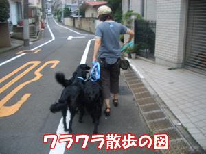 b0015963_05372.jpg