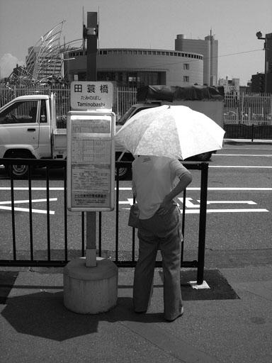 突然暑い日になりましたね。^_^;_e0015690_2002032.jpg