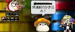 b0068519_15112067.jpg