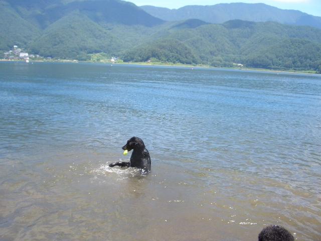 河口湖_f0098338_1720612.jpg