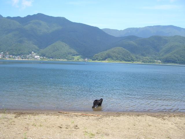 河口湖_f0098338_17403158.jpg