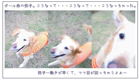 b0065643_19355960.jpg