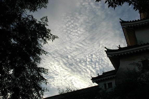 和歌山城と雲  3_b0093754_0563152.jpg