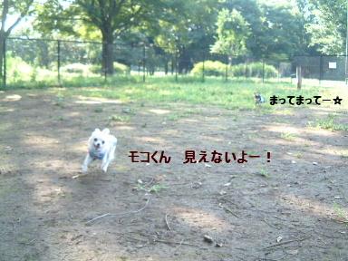 f0101658_146652.jpg