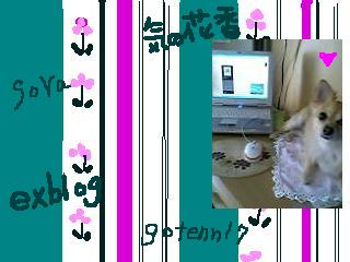 f0092767_11502921.jpg