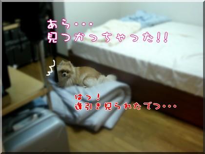 b0078073_2259098.jpg