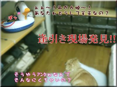 b0078073_22593688.jpg