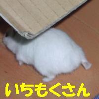 b0016983_0293254.jpg