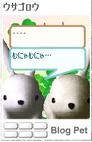 a0063386_1417550.jpg