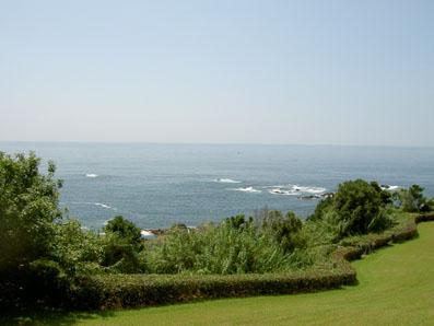 土佐の海は、こじゃんとえいき、きてみいやっ!_f0039487_15393662.jpg