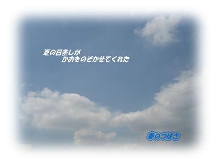 f0054187_1021329.jpg