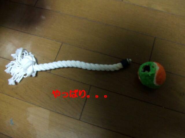 f0059334_9271979.jpg