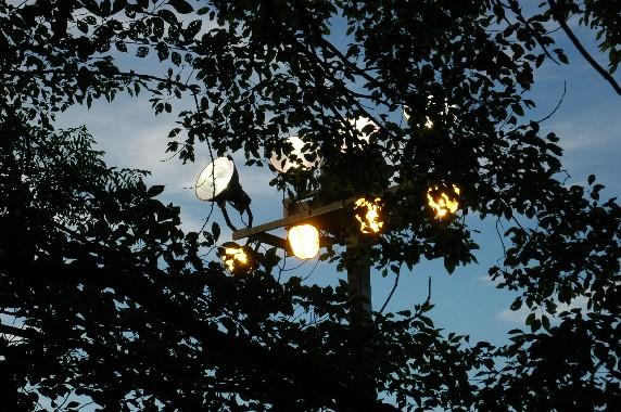 和歌山城 ライトアップ  1_b0093754_0591254.jpg