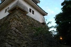 和歌山城 ライトアップ  1_b0093754_114133.jpg