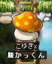 f0070197_0345958.jpg