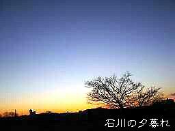 f0000521_563627.jpg