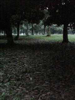 b0072729_2001078.jpg