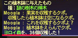 b0003550_13271.jpg
