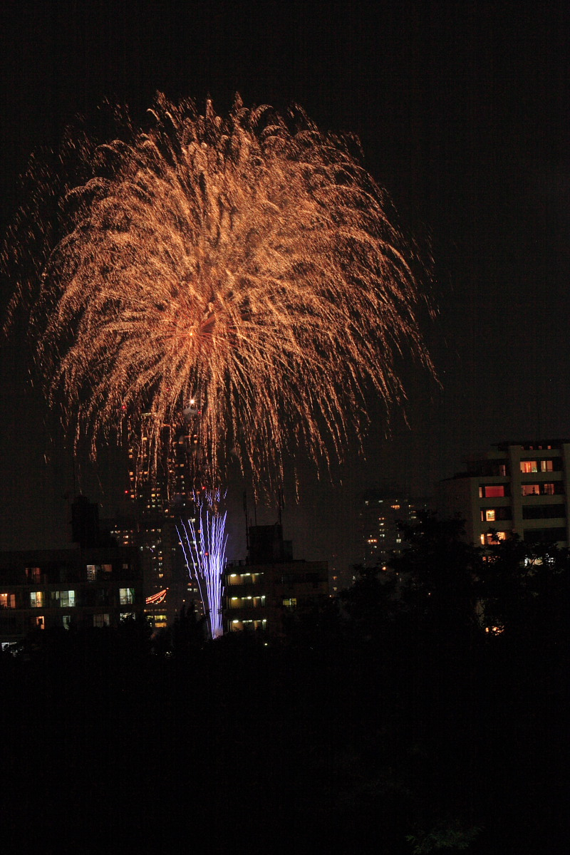 大阪 天神祭り/花火 2_f0021869_23341688.jpg