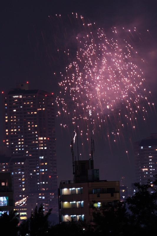 大阪 天神祭り/花火 2_f0021869_23384515.jpg