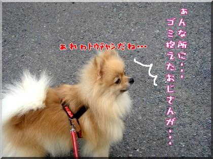 b0078073_1110882.jpg