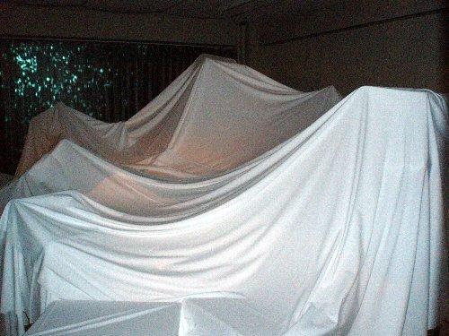 大地の芸術祭・越後妻有アートトリエンナーレ2006_e0087201_2233554.jpg