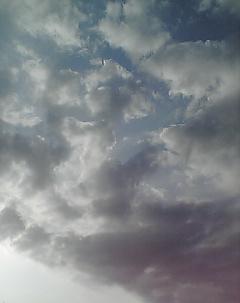 こんな天気のいい日曜日にすることは。_b0072729_17231740.jpg