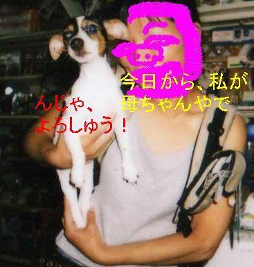f0053952_2126266.jpg