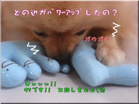 b0078073_2159048.jpg