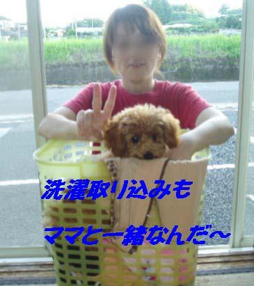 f0061283_21324830.jpg