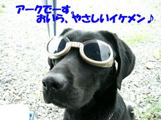 f0077097_15564643.jpg