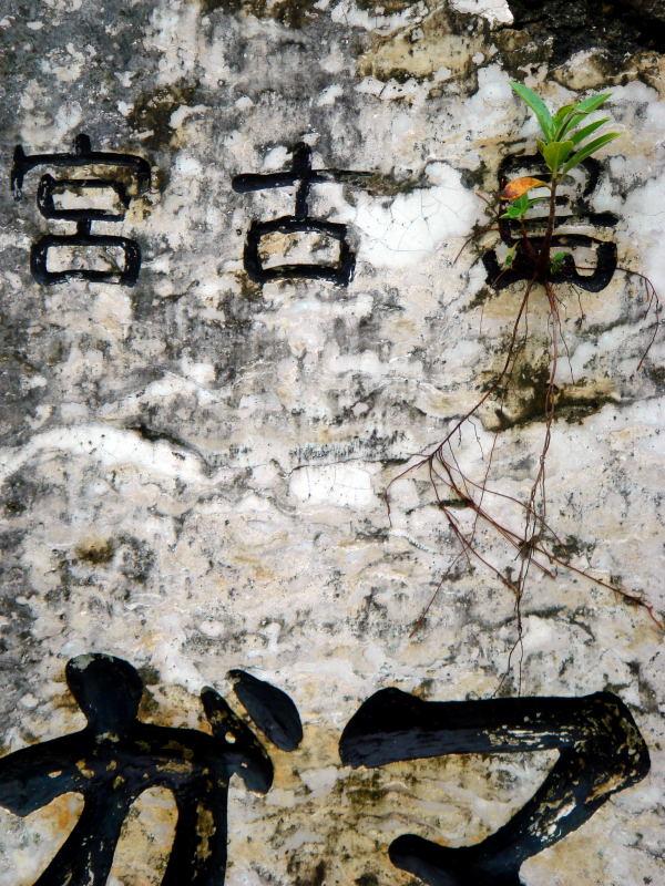 ぬちんずま《生命の島》宮古島_e0004009_0115352.jpg