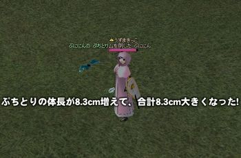 d0063510_158138.jpg