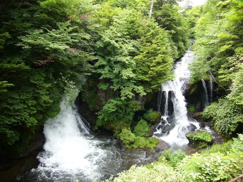 クッキングキャンプat中禅寺湖_b0025511_1653428.jpg
