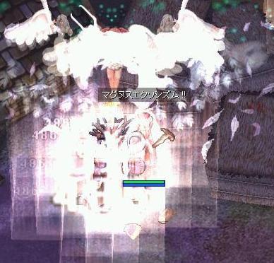 b0075938_233753.jpg