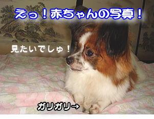 f0011845_16473392.jpg