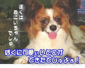 f0011845_16495482.jpg