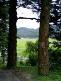長福寺からの眺め_d0027486_12214156.jpg