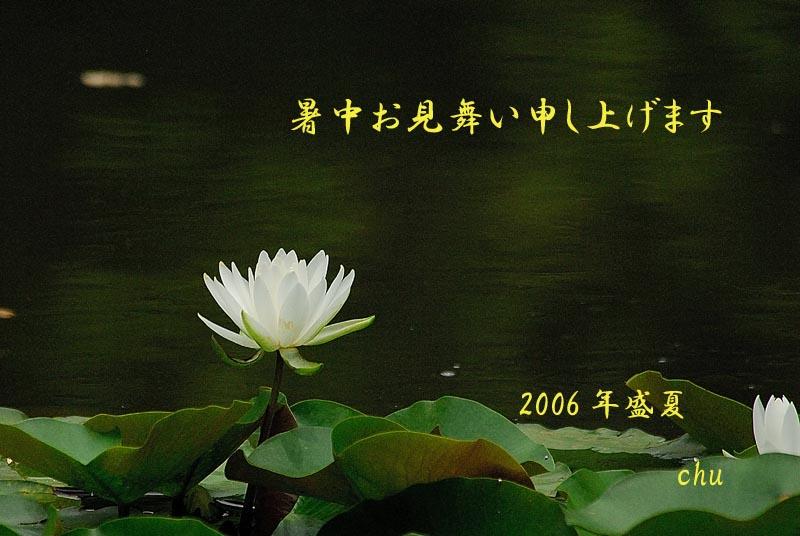 b0024798_1354314.jpg