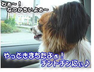 f0011845_12501457.jpg