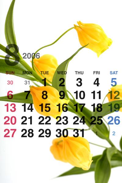 8月のカレンダー_a0003650_15134574.jpg