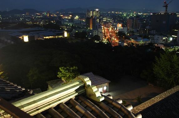 和歌山城 ライトアップ  5_b0093754_0492076.jpg