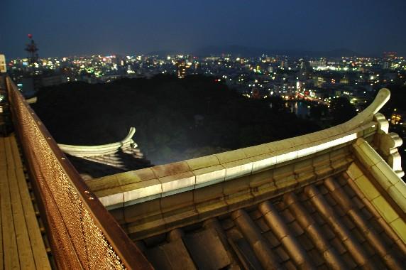 和歌山城 ライトアップ  5_b0093754_0493660.jpg