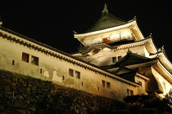 和歌山城 ライトアップ  5_b0093754_0501639.jpg