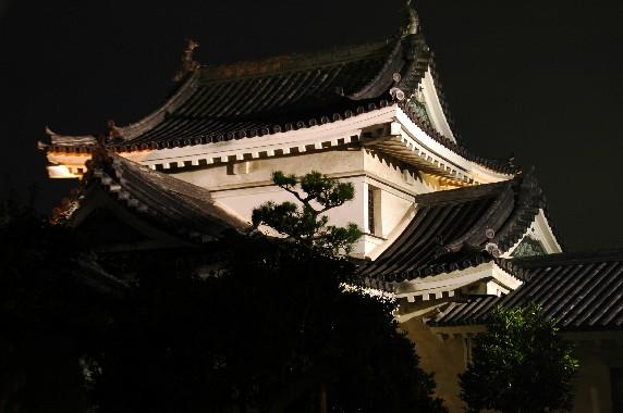 和歌山城 ライトアップ  5_b0093754_050433.jpg