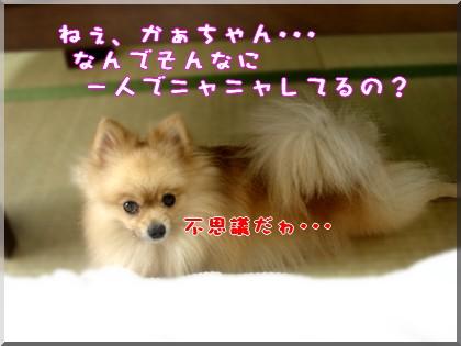 b0078073_0115374.jpg